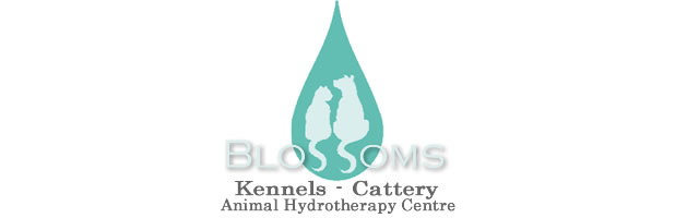 Blossoms Kennels & Cattery, Woodford, Cheshire